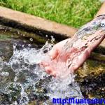 Những trường hợp giấy phép khai thác, sử dụng tài nguyên nước bị thu hồi