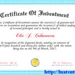Xin giấy chứng nhận đăng ký đầu tư đối với dự án đầu tư nước ngoài