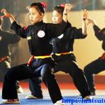 Xin cấp giấy chứng nhận đủ điều kiện hoạt động võ cổ truyền